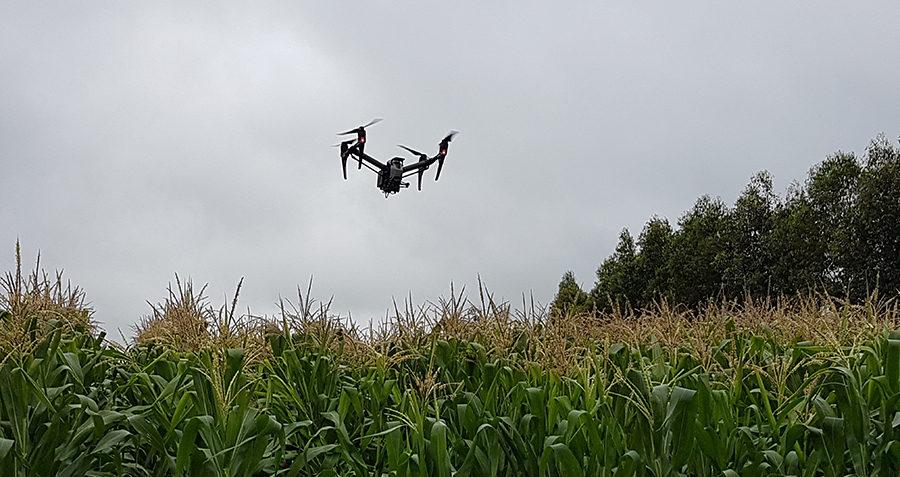 imagens de drones