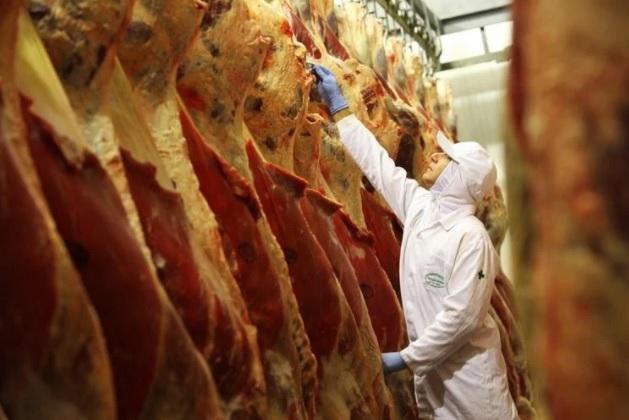Suspensão carne de boi árabes